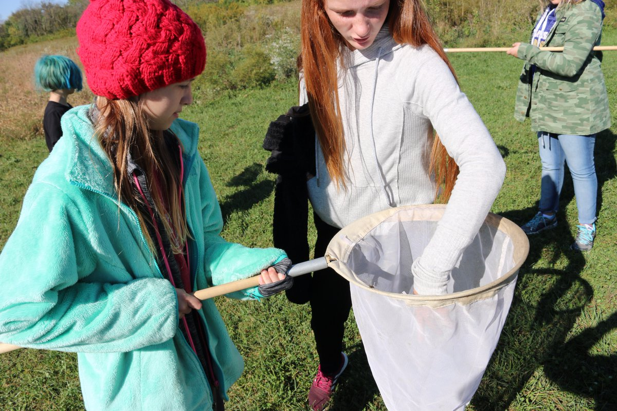 Students with Camp Oty-Okwa catch bugs at the CES wetlands